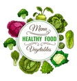 Healthy vegetable food poster Vegetarian menu vector image vector image