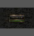 premium black green label with golden frame vector image vector image