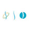 spine diagnostics symbol vector image vector image
