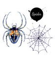 watercolor spider and spiderweb painted isolated vector image vector image