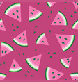 watermelon fresh seamless pattern vector image vector image