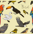 bird collection pattern vector image vector image