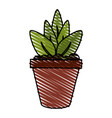 color crayon stripe cartoon plant in pot vector image vector image