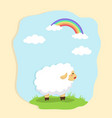 cute sheep in field and rainbow background vector image vector image