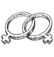 hand drawing female and female symbol vector image vector image