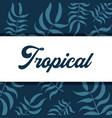 tropical flowers background vector image vector image