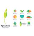 agriculture design logo natural design logo