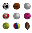 Collection of sport ball vector image vector image