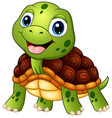 cute turtle cartoon smiling vector image vector image