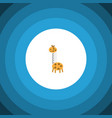 isolated giraffe flat icon toy element can vector image