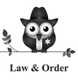 Law and Order USA vector image vector image