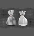 plastic sachet transparent bag wrap empty vector image vector image