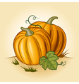 Retro pumpkins vector image