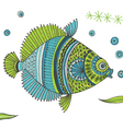 Tropical Fish background vector image vector image