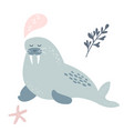 baprint with dreaming walrus hand drawn graphic vector image