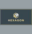ra hexagon logo design inspiration vector image vector image