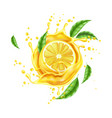 realistic lemon splash flow with leaves vector image vector image