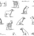 seamless background outlines various guard dogs vector image