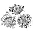 set with three fantasy flower framed leaves vector image