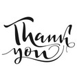thank you handwritten calligraphy text isolated on vector image