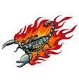 this scorpion with fire design vector image