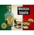 Two stemware of tequila with bootle vector image vector image
