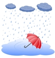 Umbrella in puddle in rain vector image