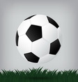 best soccer football isolated background vector image vector image