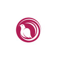 bird wing dove icon template vector image