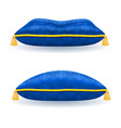 blue satin pillow with gold rope and tassels vector image vector image