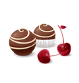 Chocolate candy and cherry vector image vector image