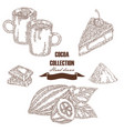 hand drawn cocoa beans cocoa pod chocolate cake vector image