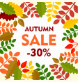 leaves final autumn sale background flat style vector image vector image