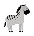zebra horse vector image