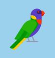 parrot green bird breed species animal nature vector image