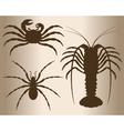 Arthropods vector image vector image