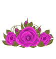 Bouquet beautiful roses isolated on white vector image
