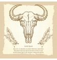 Buffalo skull on vintage background vector image