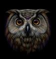long-eared owl vector image vector image