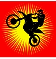 Motocross racer vector image vector image