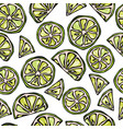seamless lime slices background pattern of citrus vector image