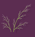 sticker dill isolated hand drawing flavoring vector image vector image