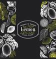 vintage citrus background lemon tree design vector image vector image