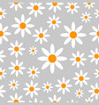 chamomiles seamless pattern background vector image vector image