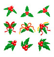 holly berry red ribbon vector image