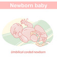 lnewborn baboy or girl with umbilical cord vector image vector image