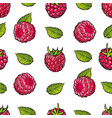 raspberry seamless pattern with fresh ripe berries vector image