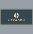 rw hexagon logo design inspiration vector image vector image