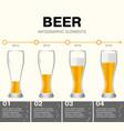 beer infographic elements timeline vector image