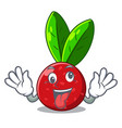crazy fruit yangmei isolated on the mascot vector image vector image